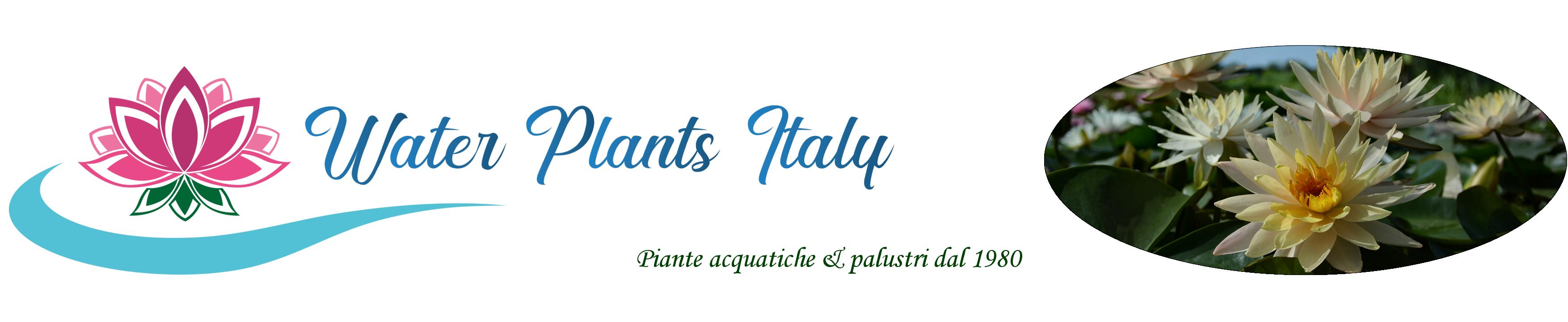 Piante acquatiche - Water Plants Italy
